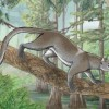 древно млекопитаещо