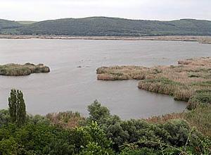 Резерват Сребърна